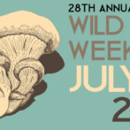 WILD HERB WEEKEND 2016 – JULY 22-24